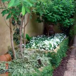 Japanese Painted Ferns, Moonlight Calladiums, White Impatiens and Creeping Fig